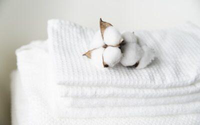 Durabilidade e elegância, conheça o tecido de algodão egípcio
